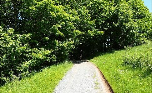 Rundwanderweg Harz